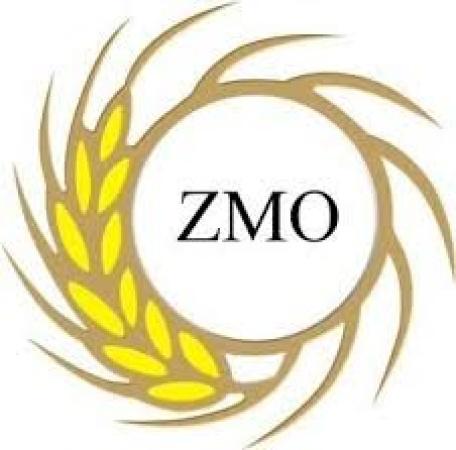 ZMO, Fare Popülasyonu İle Mücadele Başlatılması Gerektiğini Vurguladı