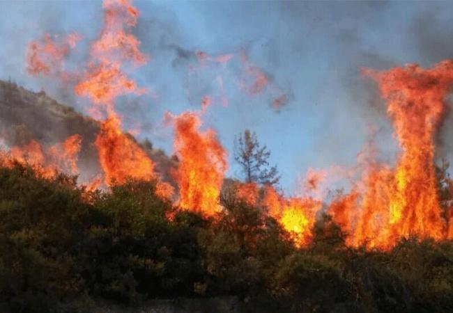 """Limasol-Baf sınırındaki büyük yangında """"kundaklama"""" şüphesi: """"Yangın, 6 farklı noktadan çıktı"""""""